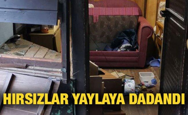 Rize'de 21 yayla evi soyuldu