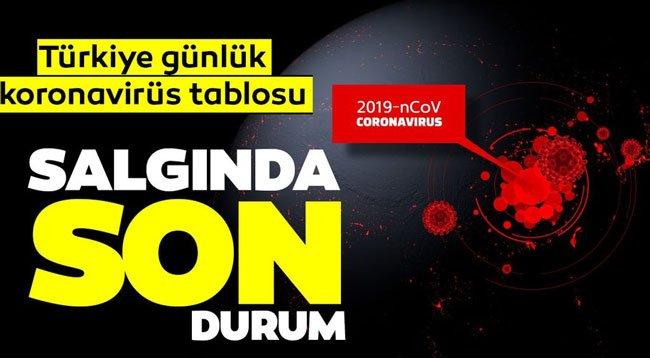 Türkiye'nin Son 24 Saatteki Koronavirüs Raporu