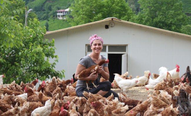 Özlediği Köyüne Dönen Sevtap, Tavuk Çiftliği Kurdu