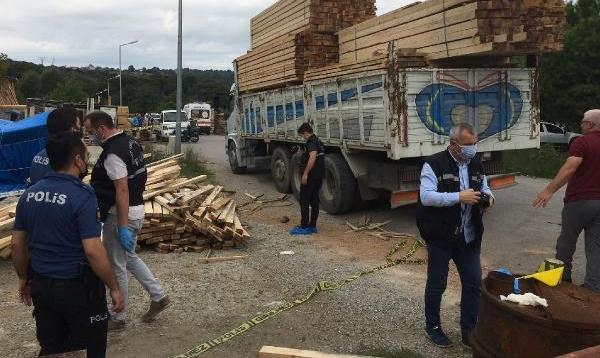 Üzerine kereste düşen kamyon şoförü öldü